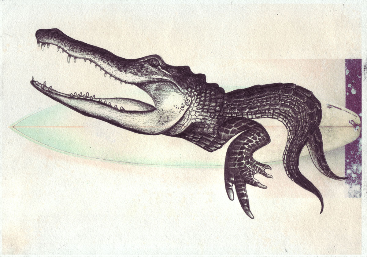 croc drawing by khanage